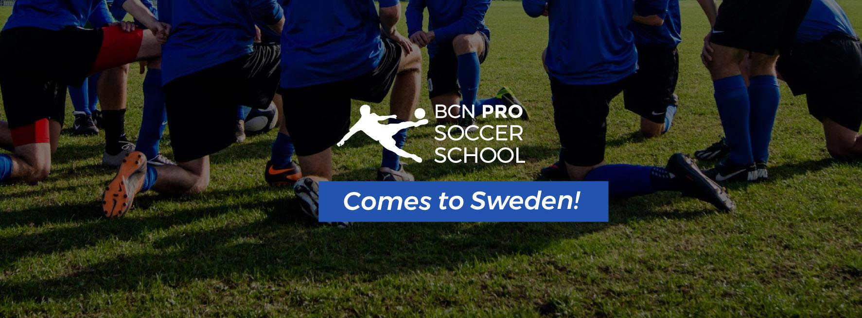 facebook-sweden-proschool